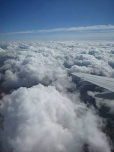 flying_home