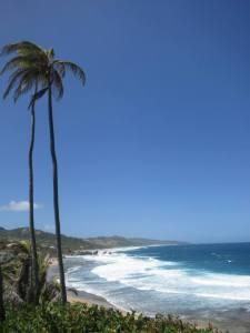 barbados_view